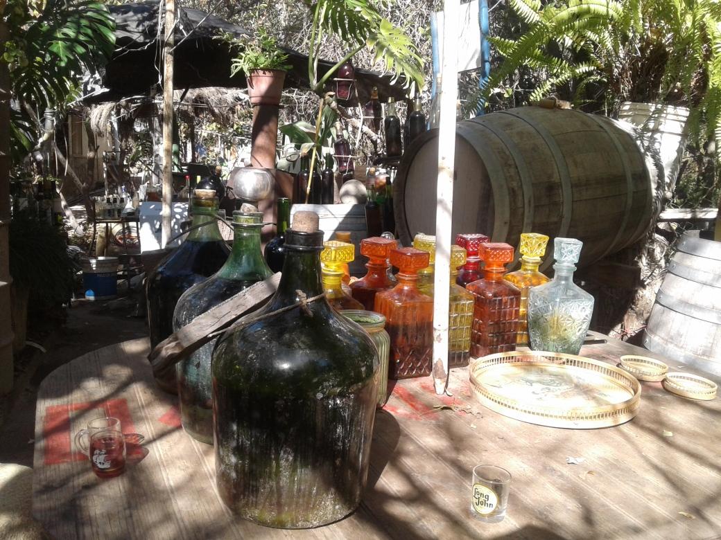 Pisquera artisanale dans la vallée del elqui au chili
