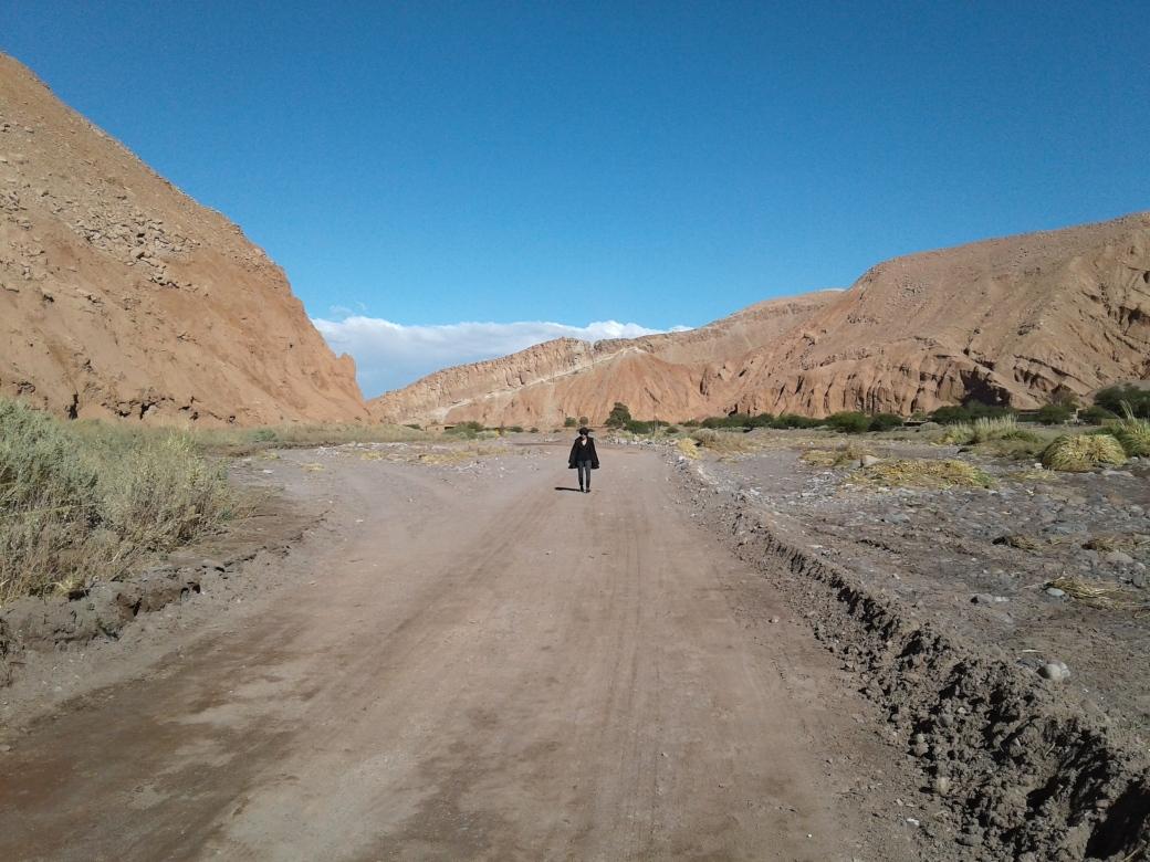 La Vallée de Catarpe à San Pedro de Atacama au Chili